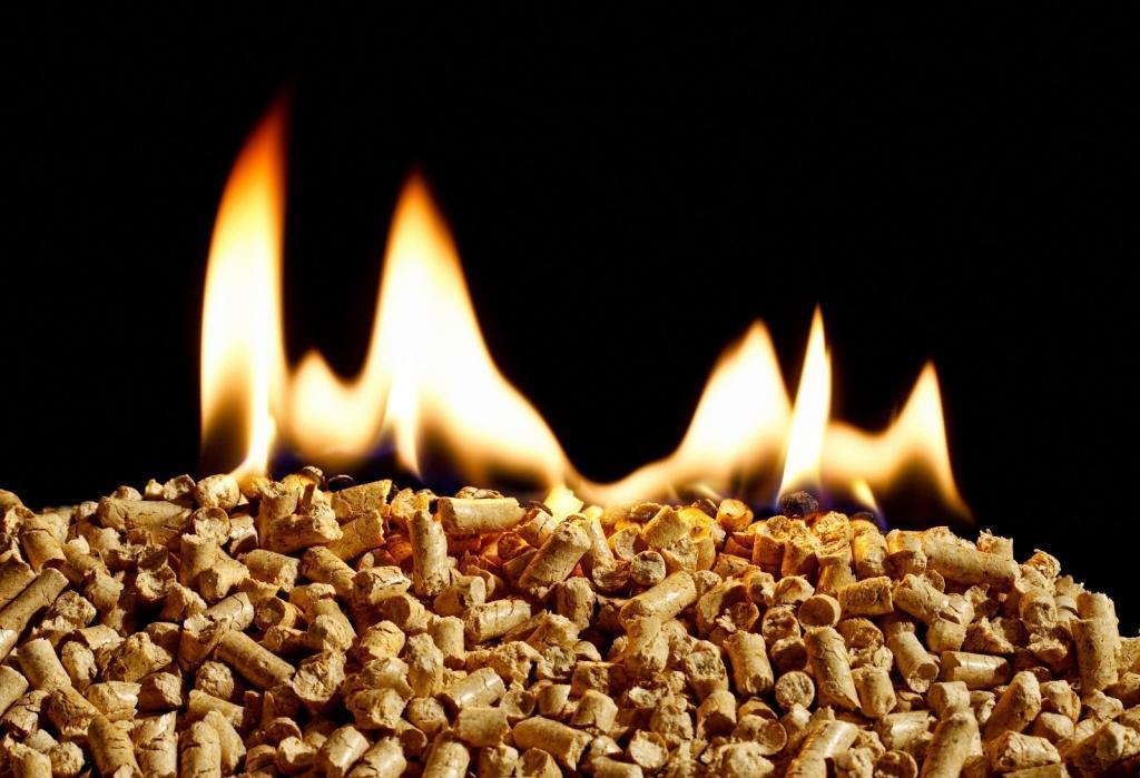Biomasa - product image