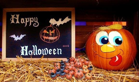 Halloween program - product image