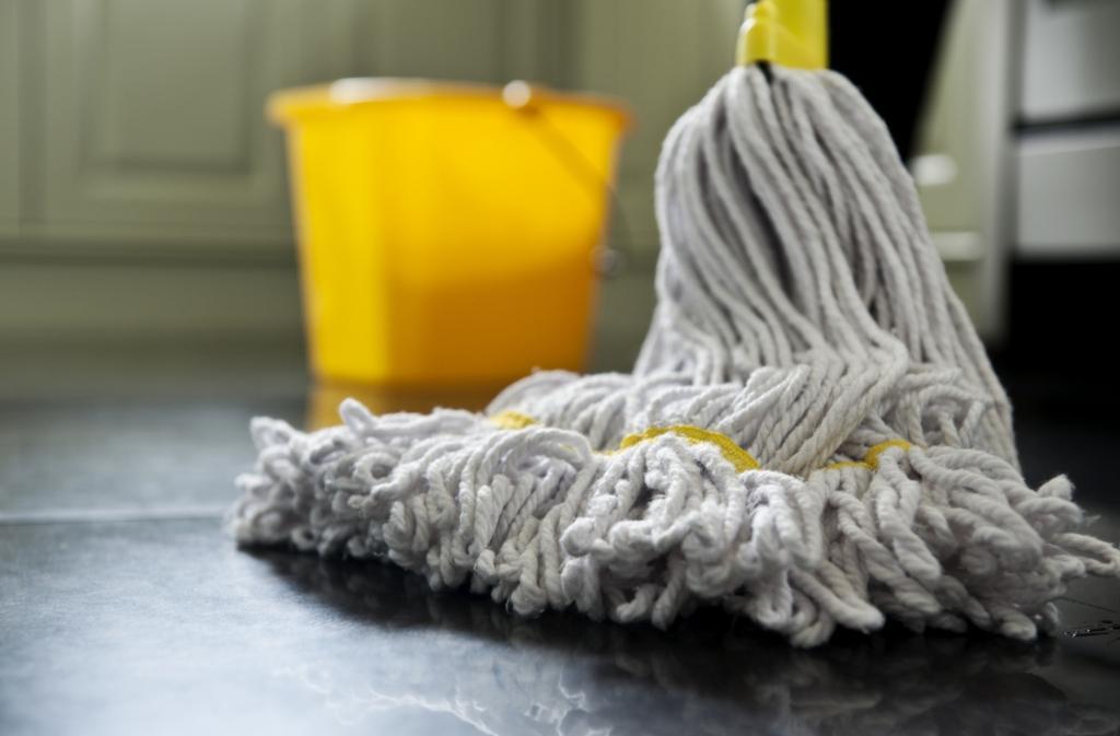 Redno čiščenje - product image