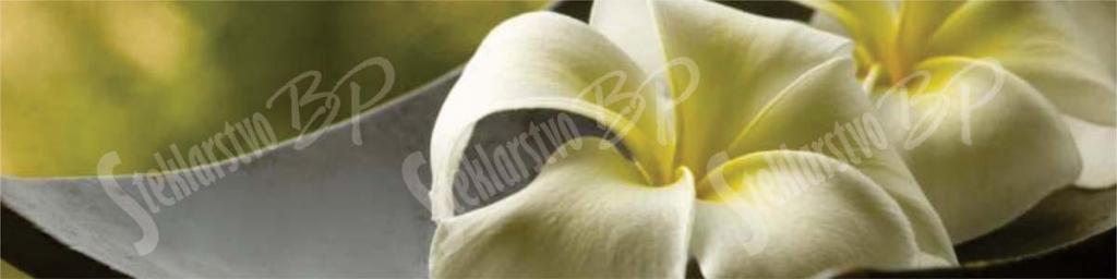 Fototapete - product image