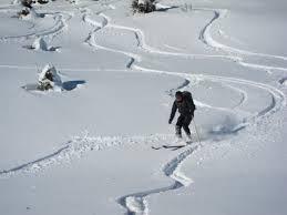 Karnijske Alpe - na Lepi vršič - product image