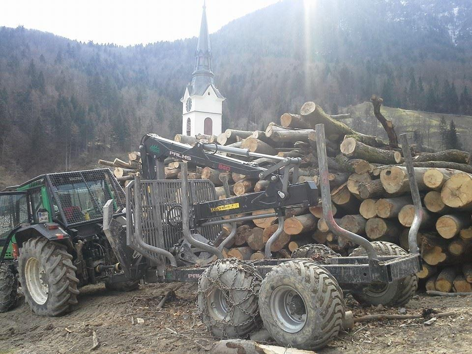 Celovito upravljanje z gozdom - product image